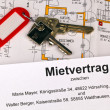 Stock Photo: Lease in german