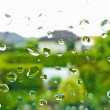 Rain drops on a window pane — Stock Photo