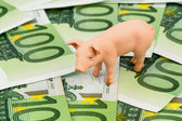 świnia na pieniądze banknotów euro — Zdjęcie stockowe