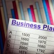 Business plan — Stock Photo #24701153