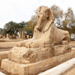 Egypt, memphis, — Stock Photo