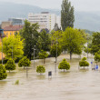 Flood, 2013, linz, austria — Stockfoto