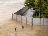 Flood, 2013, linz, austria — Stock Photo