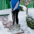 Stock Photo: Shoveling snow in winter