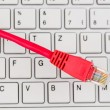 Network cable to keyboard — Stock Photo