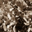Shredded paper close up — Stockfoto