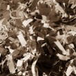 Shredded paper close up — Stock Photo #36206913