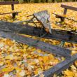 Yellow leaves in autumn — Stock Photo #38338447