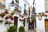 Spain, cordoba, calleja de las flores — Stock Photo