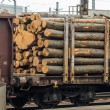 Stock Photo: Wagon loaded with wood