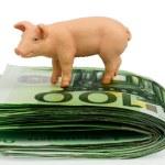Bank on euro banknotes money — Stock Photo #38800763