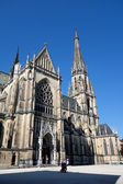 Austria, linz, st. mary's cathedral — Stock Photo