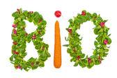 Ordet ekologisk sallad och grönsaker från — Stockfoto