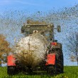 Stock Photo: Tractor fertilizes with manure field