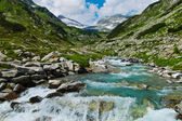 Torrential creek in the mountains — Foto Stock