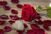 Roses for valentine's and mother's day — Foto de Stock