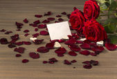 Roses for valentine's and mother's day — Stock Photo