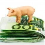 Bank on euro banknotes money — Stock Photo #44155697