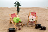 Piggy bank in a deck chair — Stock Photo