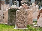 Austria, vienna, jewish cemetery — Stock Photo