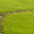 Stone path in green field — Stock Photo