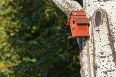 Red nesting box — Foto Stock
