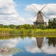 Mill in summer day — Stock Photo #13662715
