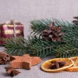 Christmas decoration — Stock Photo #14166359
