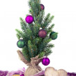 Christmas decoration — Stock Photo #14703965