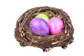 Nest with easter eggs — Stock Photo
