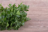 Ripe green parsley — Foto Stock