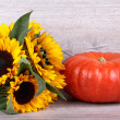 Stock Photo: Pumpkin with sunflower