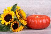 Pumpkin with sunflower — Stock Photo