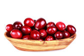 Fresh cranberries — Stock Photo