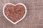 Flax seed — Stock Photo