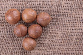 орехи макадамия — Стоковое фото
