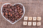 Pine nuts in  cup — Stock Photo