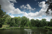 View of trees by a lake, England — Stock Photo