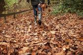 Kicking up leaves — Stock Photo