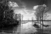 Flooded river — Stock Photo