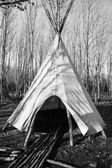 Teepee — Stock Photo
