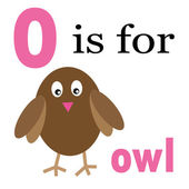 O is for Owl — Stock Vector