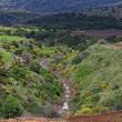 Golan Heights - Stock Photo