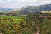 Golan heights — Foto de Stock