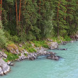 Stock Photo: River and forest