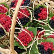 Raspberries and brambles — Stock Photo