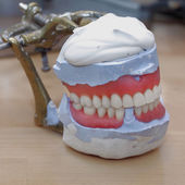 Dental Lab Articulator — Stock Photo