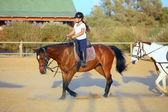 Jockey — Stock fotografie