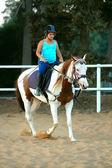 Jockey — Stockfoto