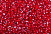 Grain of red pomegranate — Stockfoto